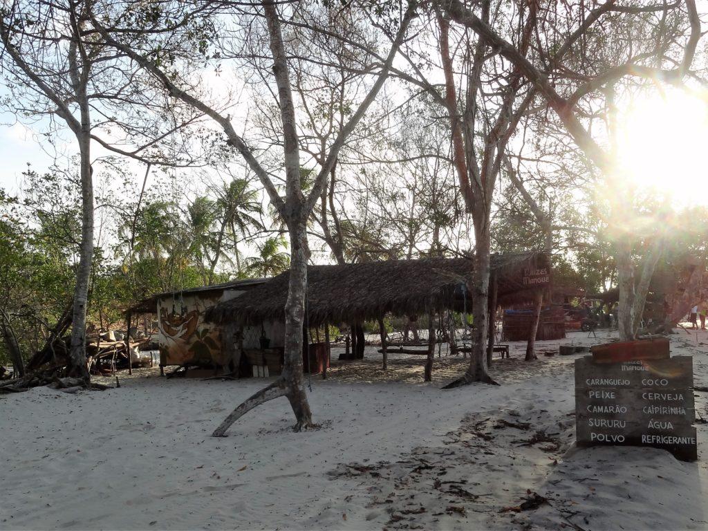 Bar dla podróżujących przez las mangrowy