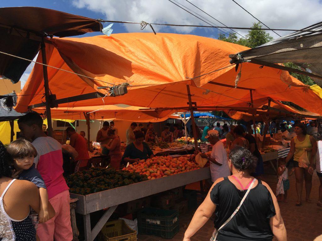 Na porannym targu można sprzedaje się wszelkie rozmaitości: owoce, żywność, żywe zwierzęta i płyty CD z muzyką