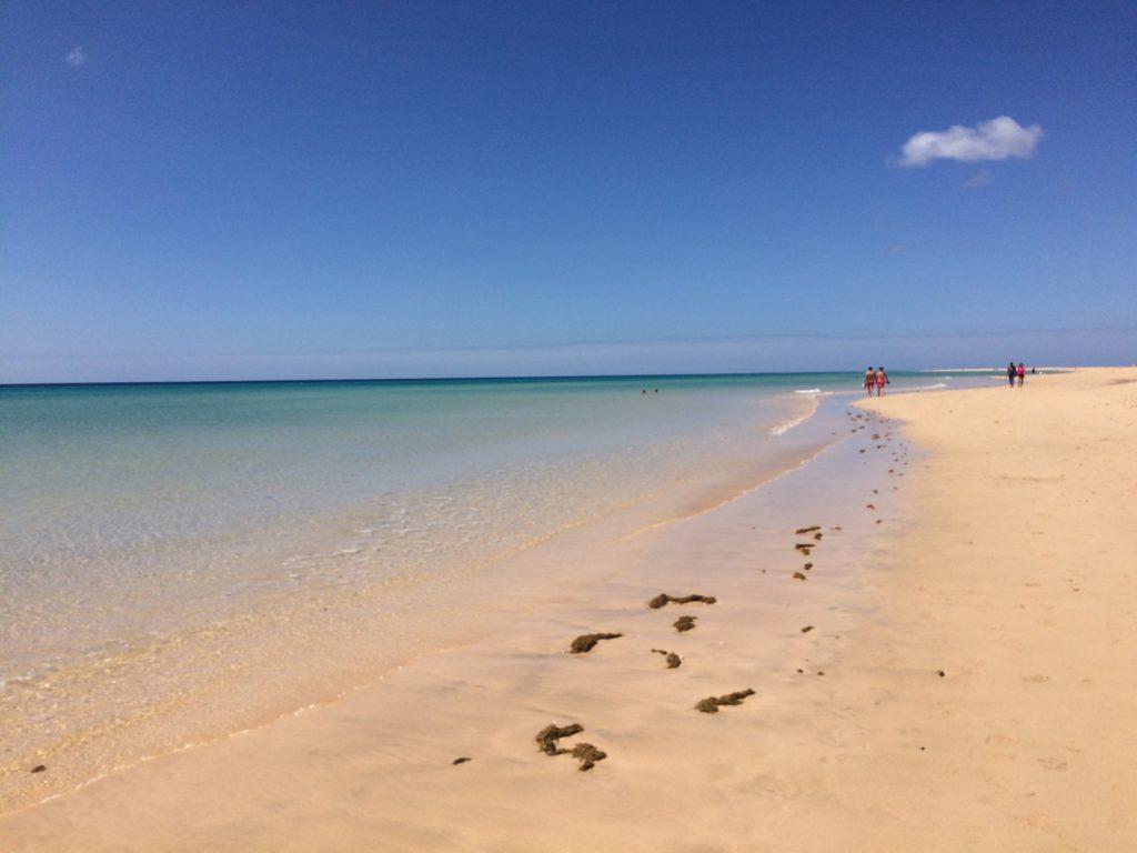 Bezwietrzny dzień na Sotavento, Fuertaventura