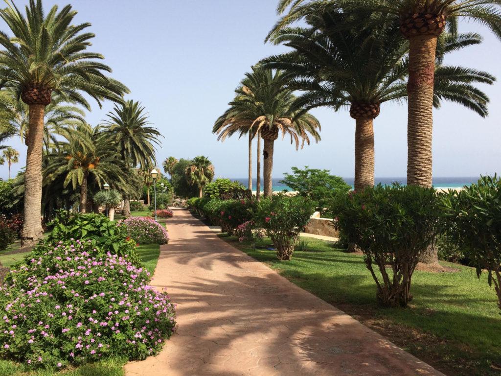 Costa Calma, Fuertaventura