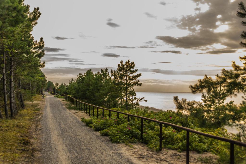 ścieżki rowerowe nad Zalewem Wiślanym